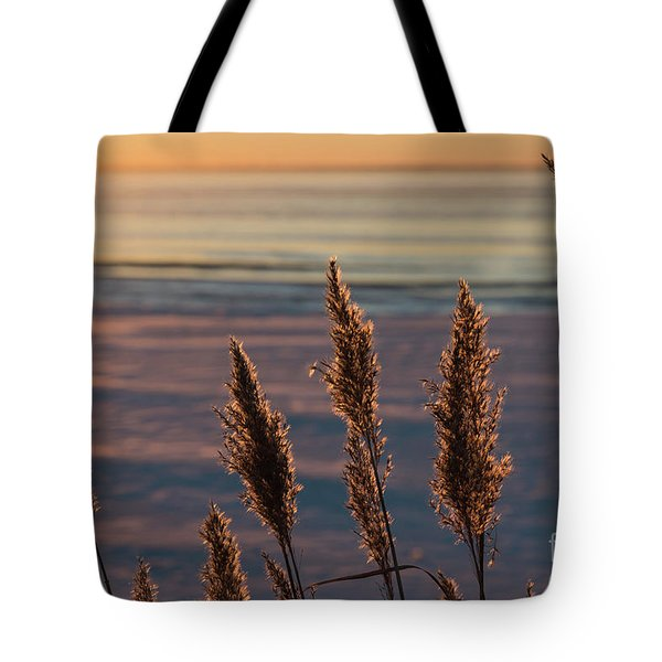 Tote Bag featuring the photograph Fluffy Reeds Flowers In Back Light by Kennerth and Birgitta Kullman