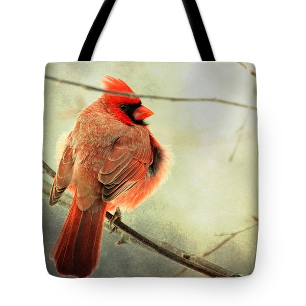 Fluffy Winter Cardinal Tote Bag