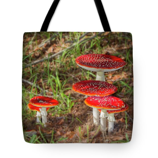 Tote Bag featuring the photograph Fly Agaric Amanita Muscaria by Elaine Teague