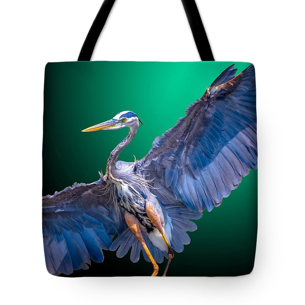 Fly-by-night Tote Bag