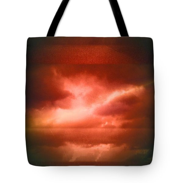 fly Tote Bag by Mark Ross