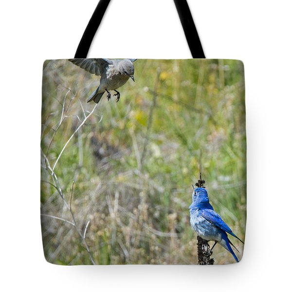 Flyby Flirt Tote Bag by Mike Dawson