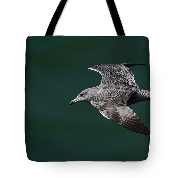 Flyby Tote Bag by Richard Patmore