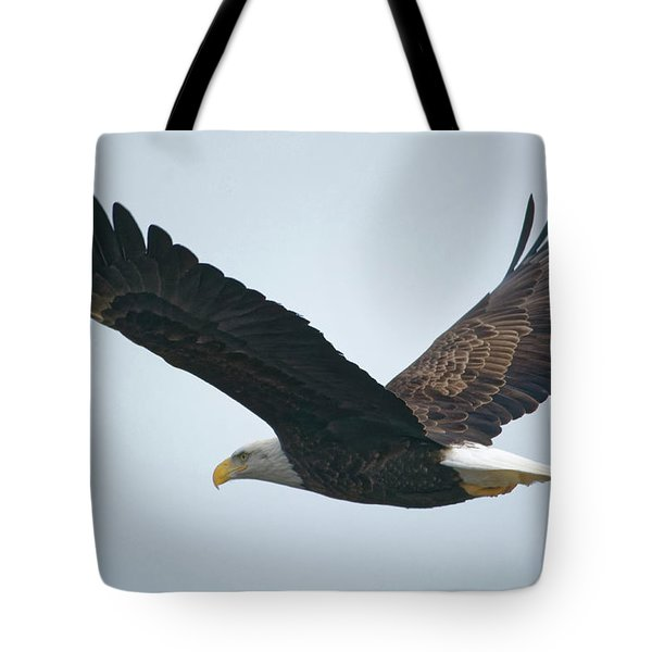 Flying Bald Eagle Tote Bag