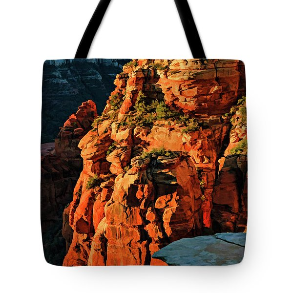 Flying Buttress 06-034 Tote Bag