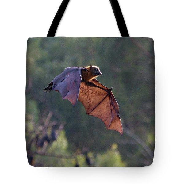 Flying Fox In Mid Air Tote Bag