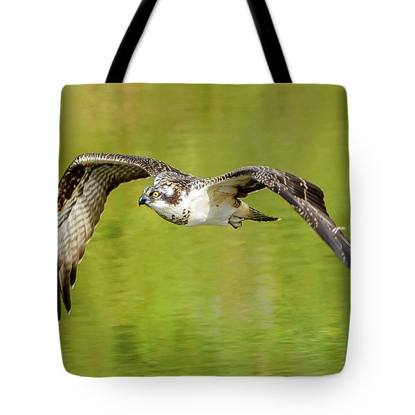 Flying Osprey Tote Bag