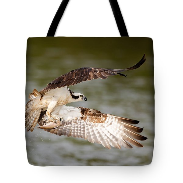 Flying Osprey With Fish Tote Bag