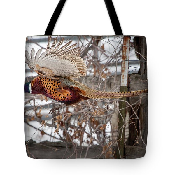 Tote Bag featuring the photograph Flying Pheasant by Wesley Aston