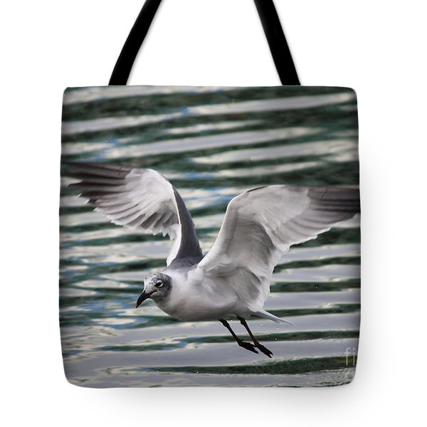 Flying Seagull Tote Bag by Carol Groenen