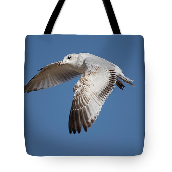 Flying Seagull Tote Bag