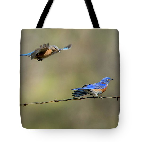 Flying To You Tote Bag by Mike Dawson