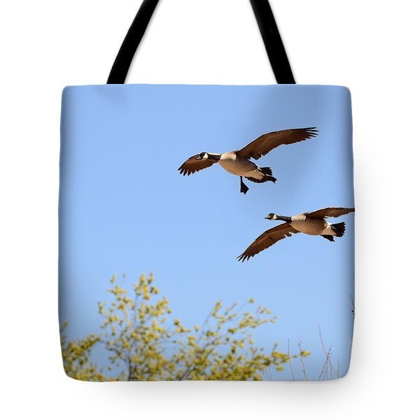 Flying Twins Tote Bag
