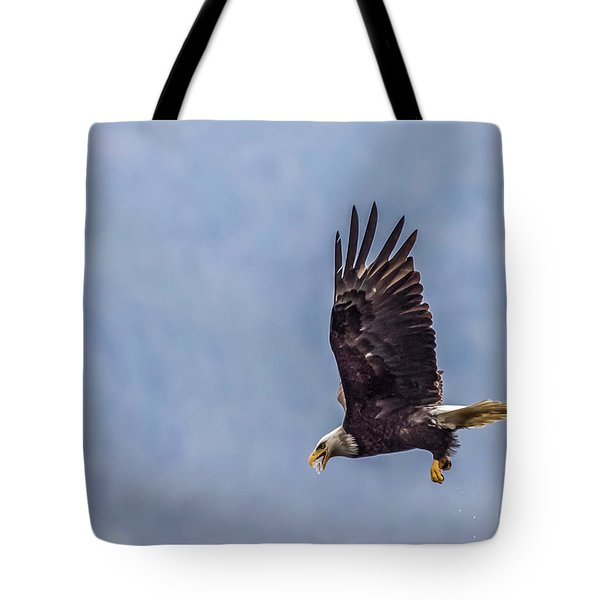 Flying With His Mouth Full.  Tote Bag by Timothy Latta