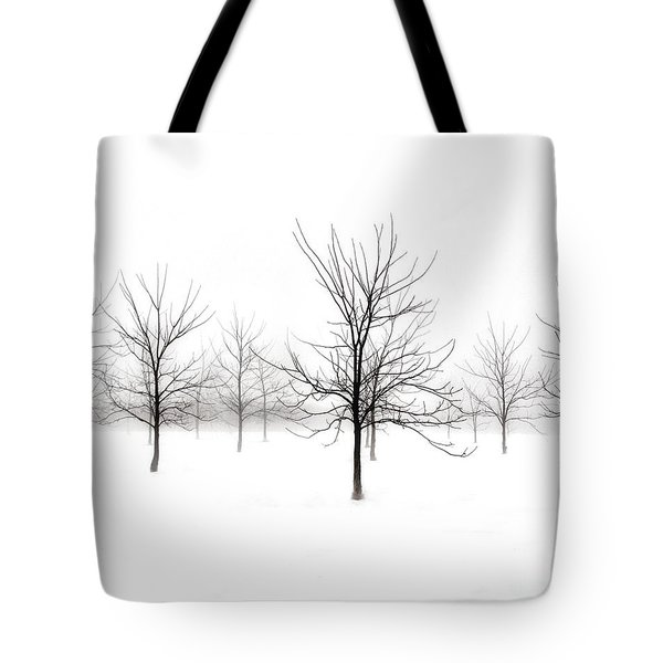 Fog And Winter Black Walnut Trees  Tote Bag by Angie Rea
