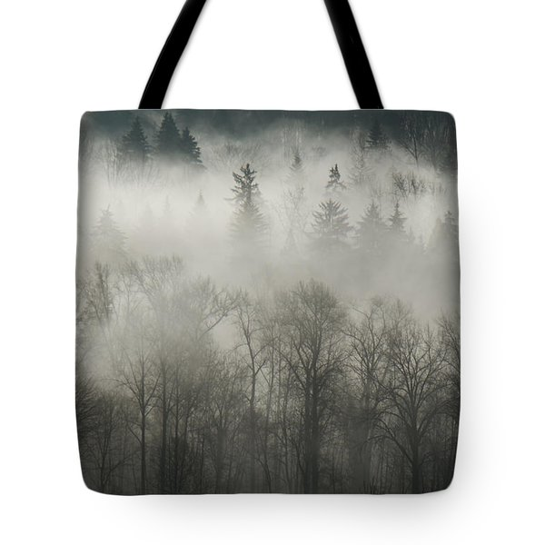 Tote Bag featuring the photograph Fog Enshrouded Forest by Lisa Knechtel