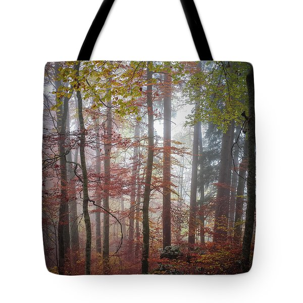 Tote Bag featuring the photograph Fog In Autumn Forest by Elena Elisseeva