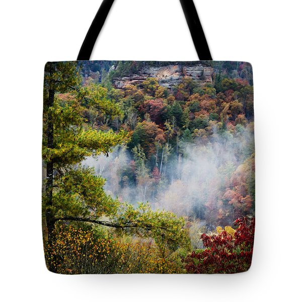Fog In The Valley Tote Bag by Diana Boyd