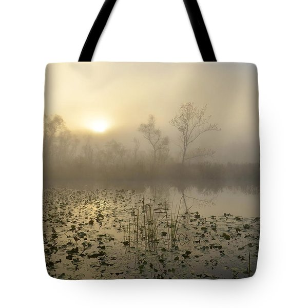 Fog On The Beaver Marsh Tote Bag by Ann Bridges