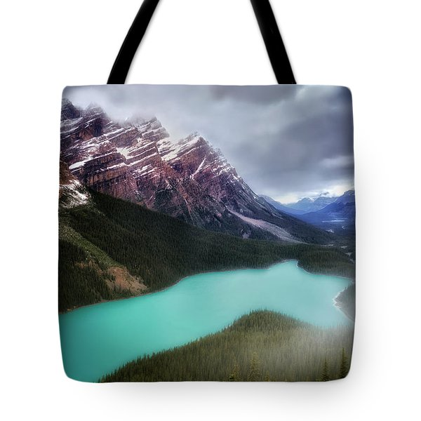 Fog Swirls Tote Bag by Nicki Frates
