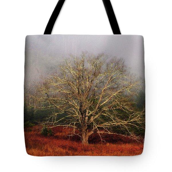 Fog Tree Tote Bag