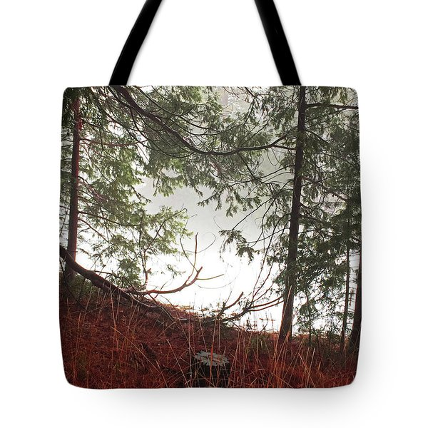 Tote Bag featuring the photograph Foggy Autumn Morning by Walter Fahmy