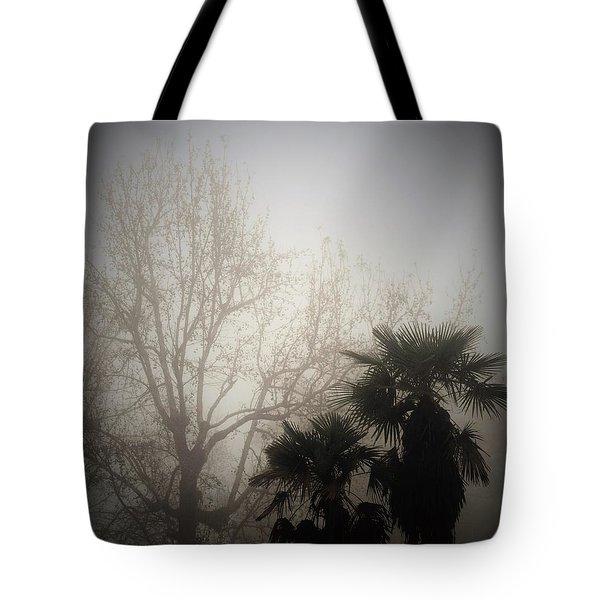 Foggy Bottoms Tote Bag