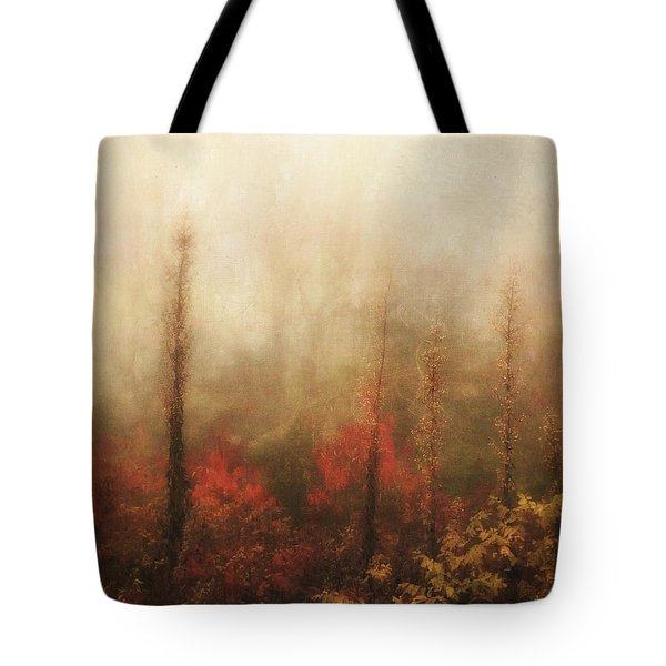 Foggy Fall On The Parkway Tote Bag