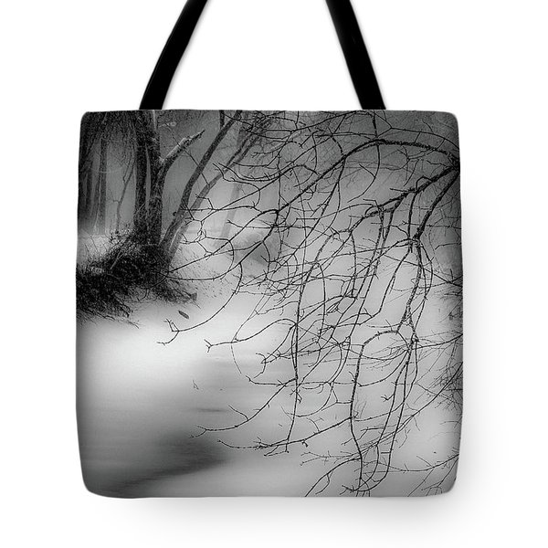 Tote Bag featuring the photograph Foggy Feeder by Kendall McKernon