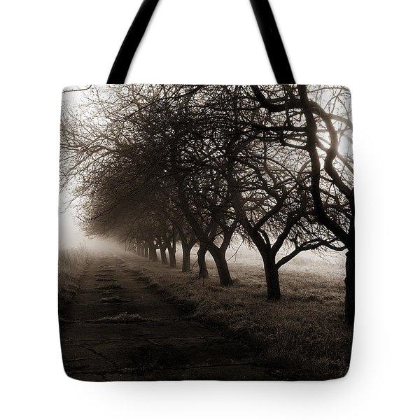 Foggy Lane Tote Bag