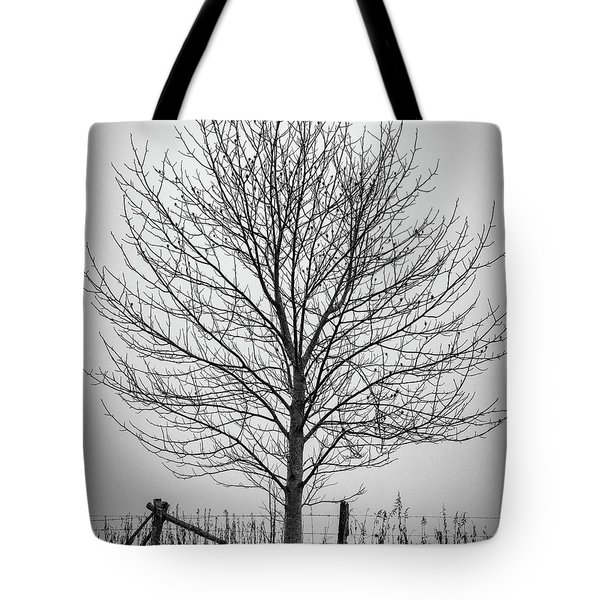 Foggy Lone Tree Hill Fine Art Tote Bag