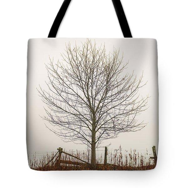 Foggy Lone Tree Hill Tote Bag