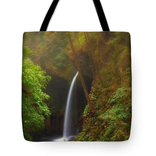 Foggy Metlako Falls Tote Bag by David Gn