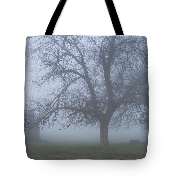 Foggy Morning Tote Bag by Randy Bayne