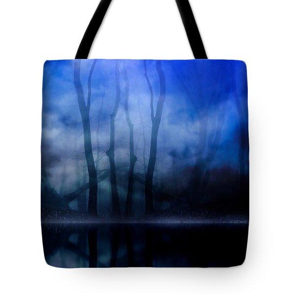 Foggy Night Tote Bag by Gabriella Weninger - David