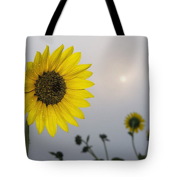 Tote Bag featuring the photograph Foggy Sunflowers by Rob Graham