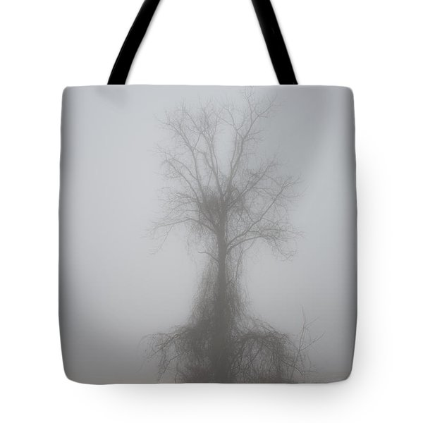 Tote Bag featuring the photograph Foggy Walnut by Wanda Krack