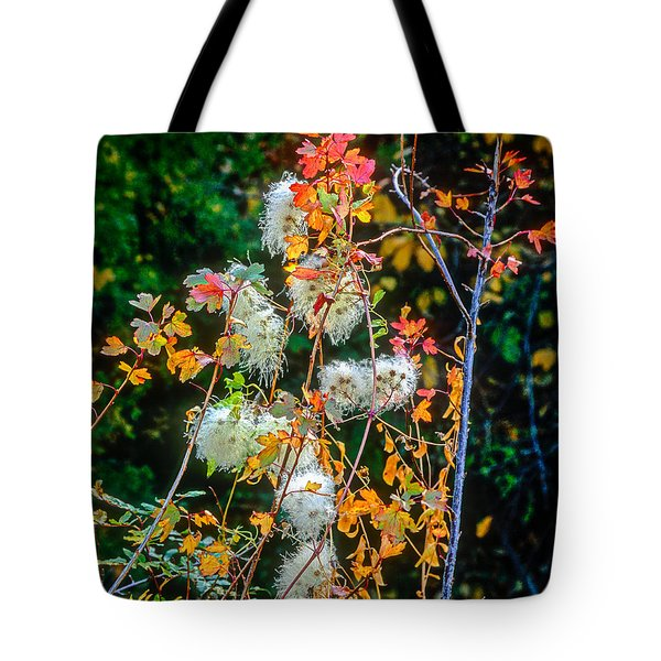 Foliage Twisted Colored Leaves Tote Bag