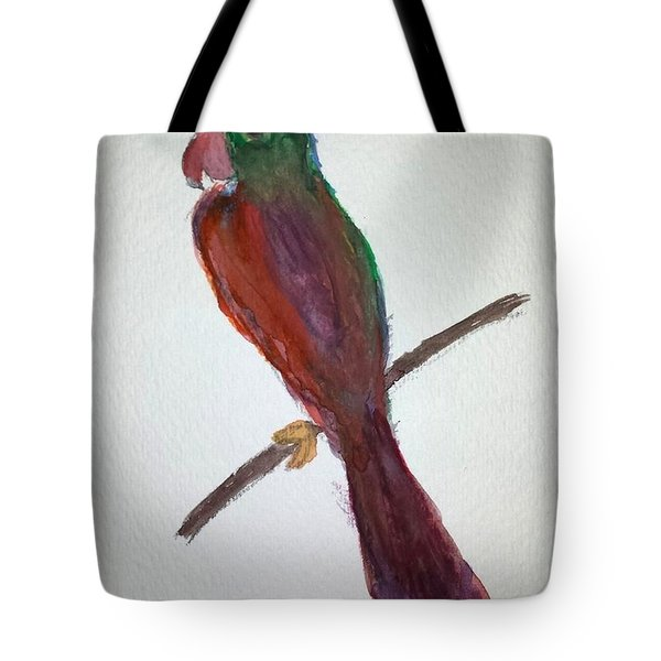 Folk Art Parrot Tote Bag