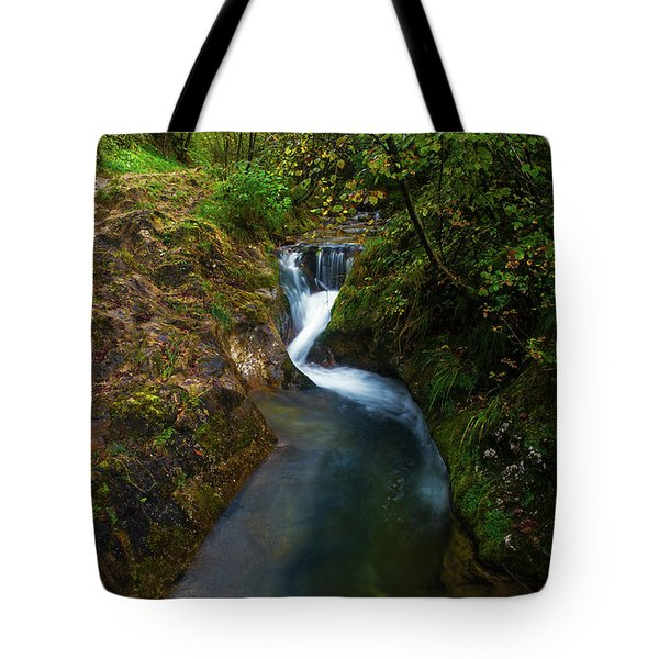 Tote Bag featuring the photograph Follow It I by Yuri Santin