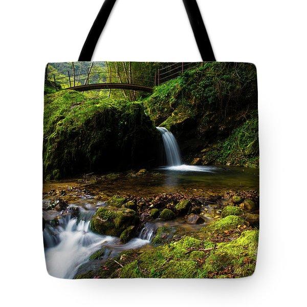 Follow It II Tote Bag by Yuri Santin