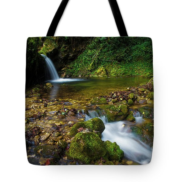 Tote Bag featuring the photograph Follow It by Yuri Santin