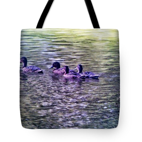 Tote Bag featuring the photograph Follow The Leader by Alohi Fujimoto