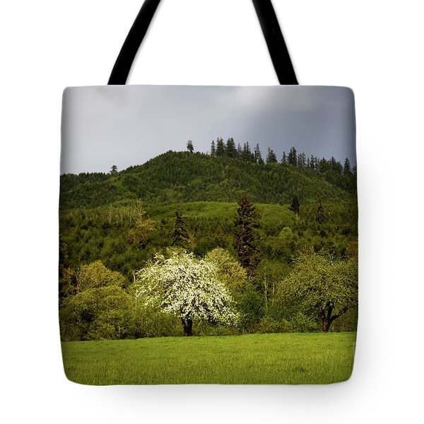 Follow The Light In The Forest Tote Bag by Jon Burch Photography