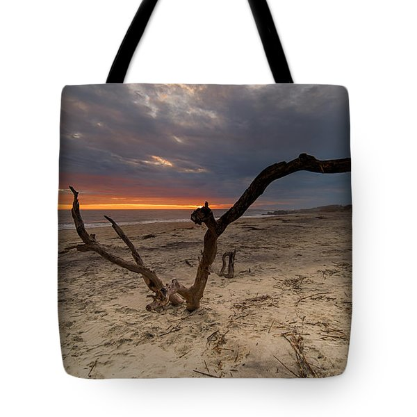 Sun Dragon  Tote Bag by Robert Loe