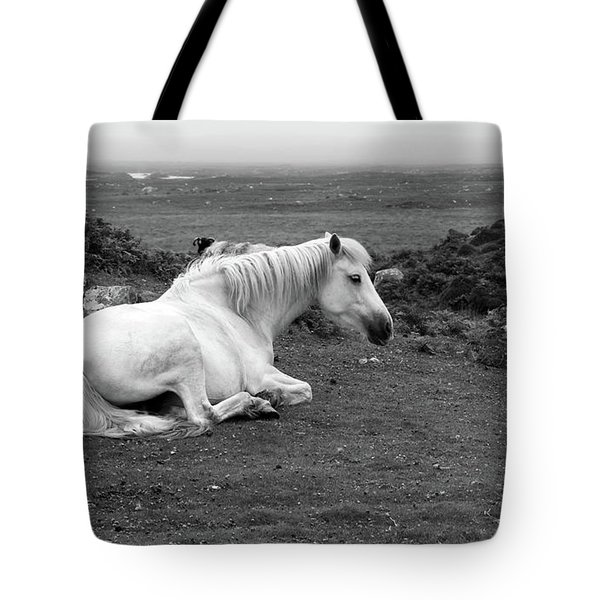Fooggy Day Roundstone Tote Bag
