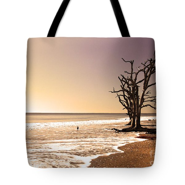 Tote Bag featuring the photograph For Just One Day by Dana DiPasquale