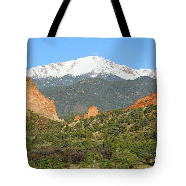 Our Spacious Skies Tote Bag