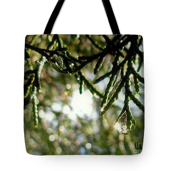 For The Love Of Bokeh 2012 Tote Bag