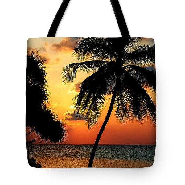For You. Dream Comes True. Maldives Tote Bag by Jenny Rainbow